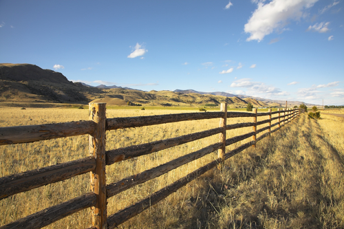 Pine Ridge Ranch